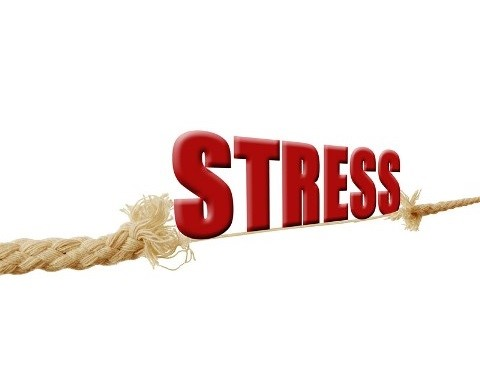 When Low Fee Investment's Don't Pass the Stress Test